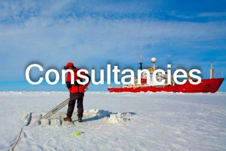 Consultancies_ThNail-text.jpg