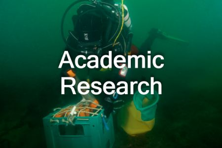 AcademicResearch_ThNail-text.jpg