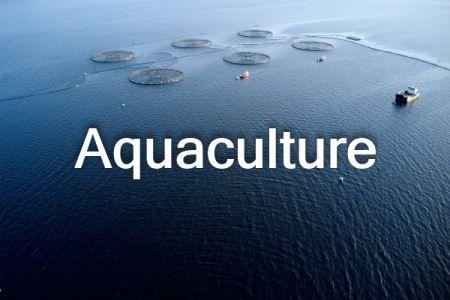 Aquaculture_ThNail-text.jpg