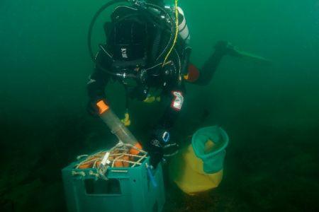 DivingROVmainpage-06.jpg
