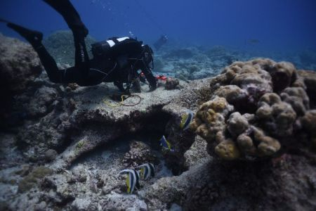 DivingROVmainpage-11.jpg